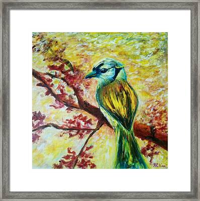 Spring Bird Framed Print by Rashmi Rao