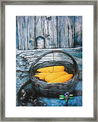 Spring Bloom And Autumn Fruition Framed Print by Tierong Fu