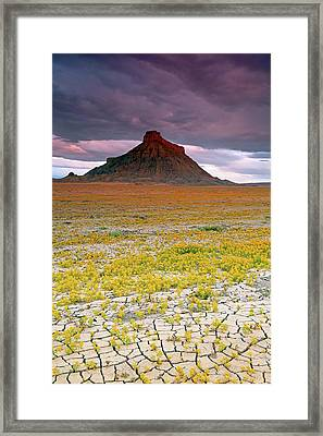 Framed Print featuring the photograph Spring Bloom At Factory Butte. by Johnny Adolphson