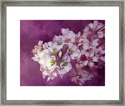 Spring Blooms Framed Print by Ann Powell