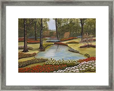 Spring Blooms Framed Print by Darren Yarborough