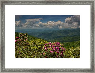 Spring Blooms On The Blue Ridge Parkway Framed Print