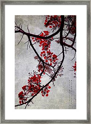 Spring Bloosom In Maldives. Flamboyant Tree II. Japanese Style Framed Print