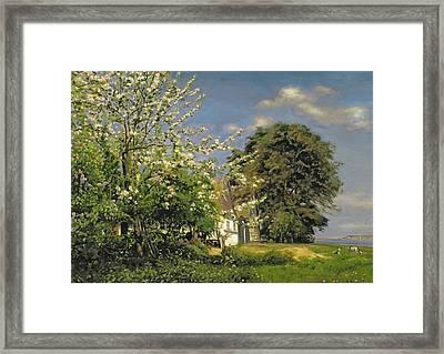 Spring Blossom Framed Print by Christian Zacho