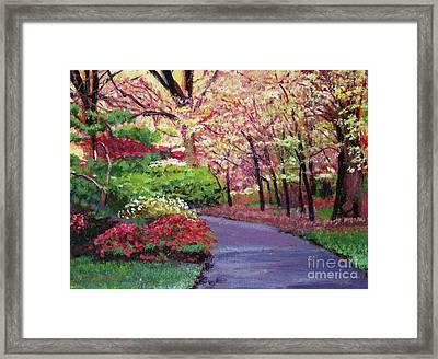 Spring Blossoms Impressions Framed Print
