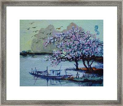 Spring Blossoms Framed Print by Min Wang