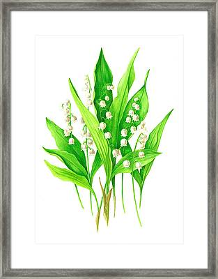 Framed Print featuring the painting Spring Bouquet by Margit Sampogna