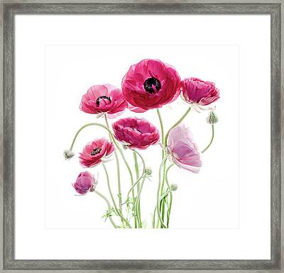 Spring Bouquet Framed Print by Rebecca Cozart