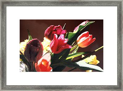 Framed Print featuring the photograph Spring Bouquet by Steve Karol