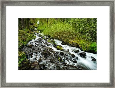 Spring Cascades Framed Print by Mike  Dawson