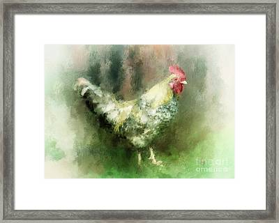 Framed Print featuring the digital art Spring Chicken by Lois Bryan