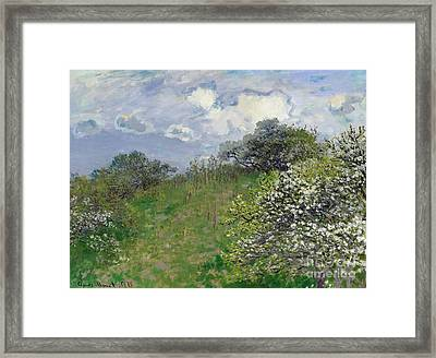 Spring Framed Print by Claude Monet