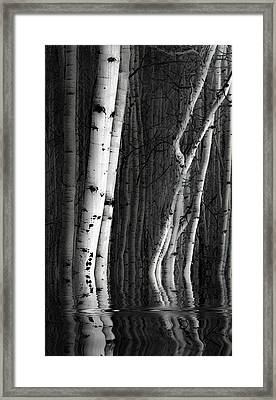 Framed Print featuring the photograph Spring Cleaning by Jeffrey Jensen