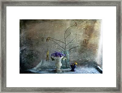 Spring Collection Framed Print by Randi Grace Nilsberg