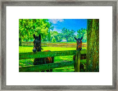 Framed Print featuring the painting Spring Colts by Louis Ferreira