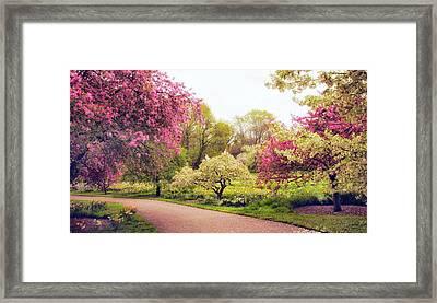 Spring Crescendo Framed Print