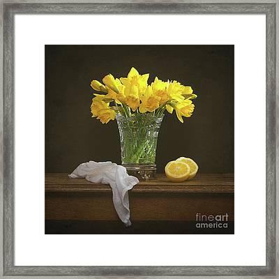 Spring Daffodil Flowers Framed Print