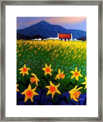 Spring Daffs  Sugar Loaf County Wicklow Framed Print by John  Nolan