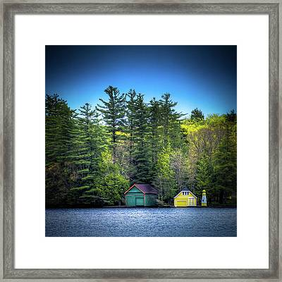 Spring Day At Old Forge Pond Framed Print by David Patterson