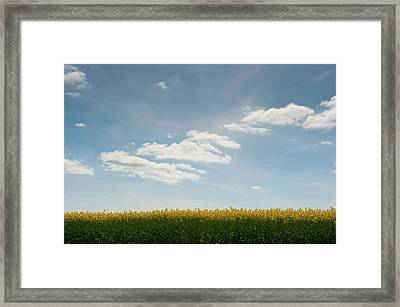 Spring Day Clouds Framed Print