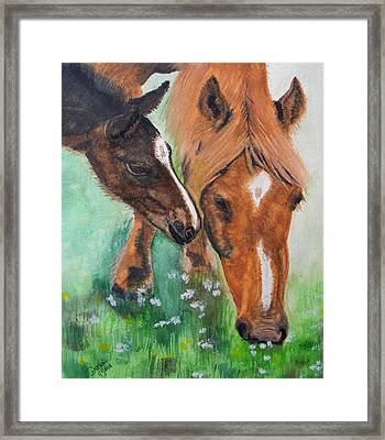 Spring Day In The Meadow Framed Print