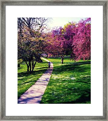 Framed Print featuring the photograph Spring Day by John Scates