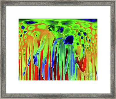 Spring Framed Print by Diane E Berry