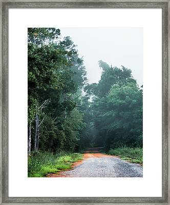 Framed Print featuring the photograph Spring Dirt Road by Shelby Young