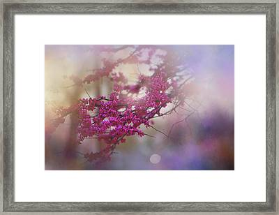 Framed Print featuring the photograph Spring Dream I by Toni Hopper