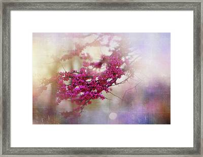 Framed Print featuring the photograph Spring Dreams II by Toni Hopper