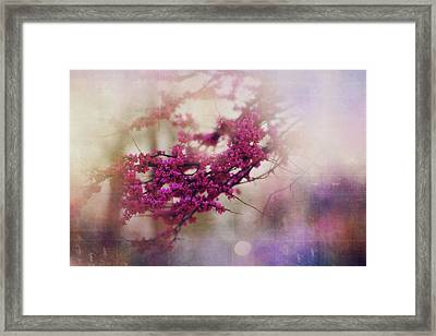 Framed Print featuring the photograph Spring Dreams IIi by Toni Hopper