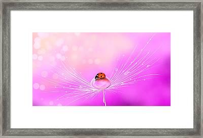 Spring Elegance Framed Print