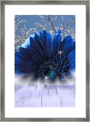 Spring Emergence  Framed Print by Cathy  Beharriell