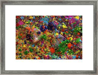 Spring Equinox Framed Print by Sean Corcoran