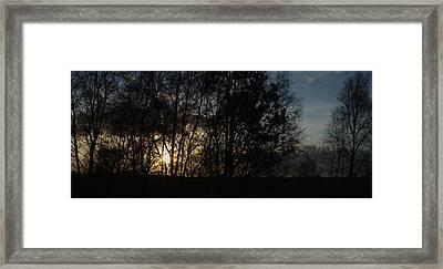 Spring Evening Sunset Through Trees Framed Print