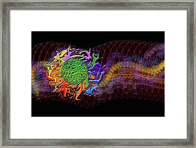 Spring Explodes Nighttime Framed Print