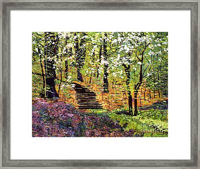 Spring Fantasy Forest Framed Print