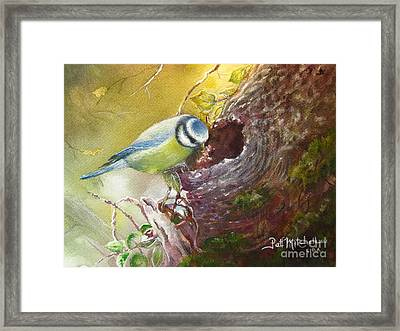 Spring Feeding Framed Print