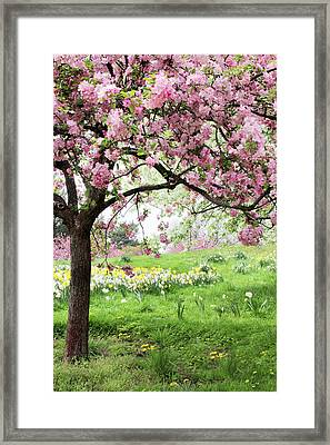 Framed Print featuring the photograph Spring Fever by Jessica Jenney