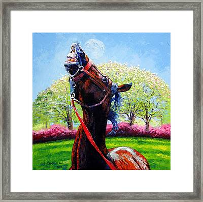 Spring Fever Framed Print by John Lautermilch