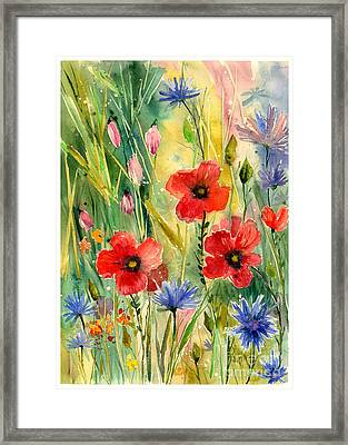 Spring Field Framed Print