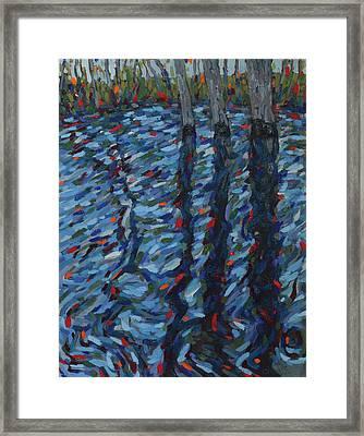 Spring Flood Reflections Framed Print