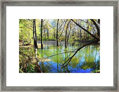 Spring Flood Framed Print by Yuri Hope