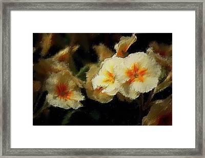 Spring Floral Framed Print by David Lane