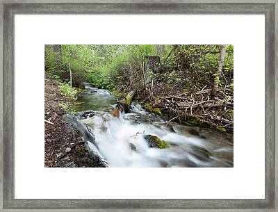 Framed Print featuring the photograph Spring Flow by Fran Riley