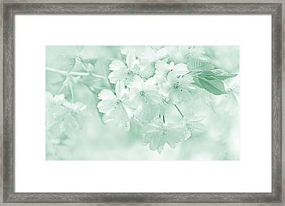 Framed Print featuring the photograph Spring Flower Blossoms Teal by Jennie Marie Schell
