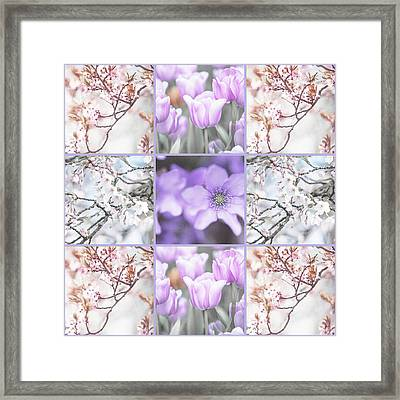 Spring Flower Collage. Shabby Chic Collection  Framed Print