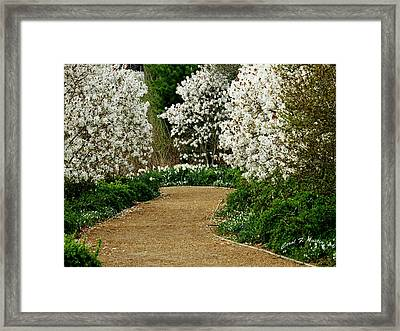 Spring Flowering Trees Wall Art Framed Print