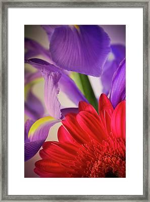 Spring Flowers 001 Framed Print