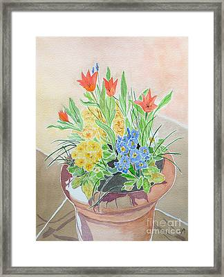 Spring Flowers In Pot Framed Print by Yvonne Johnstone